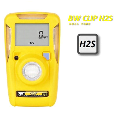 BW Clip Real Time H2S